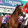 Empress Of Midway Kentucky Oaks Chad B. Harmon