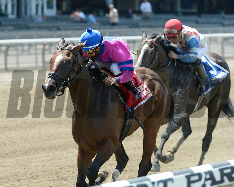 La Verdad wins the 2014 Dancin Renee Stakes at Belmont Park. <br /> Coglianese Photos/Chelsea Durand