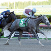 Spot wins the 2014 Swale Stakes at Gulfstream Park.<br /> Coglianese Photos/Lauren King