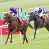 Irish Derby, The Curragh 28/6/14.<br /> Australia and Joseph O'Brien win with ease from Kingfisher.<br /> Trevor Jones Photo