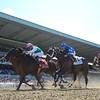 Close Hatches wins the 2014 Ogden Phipps at Belmont Park.<br /> Coglianese Photos