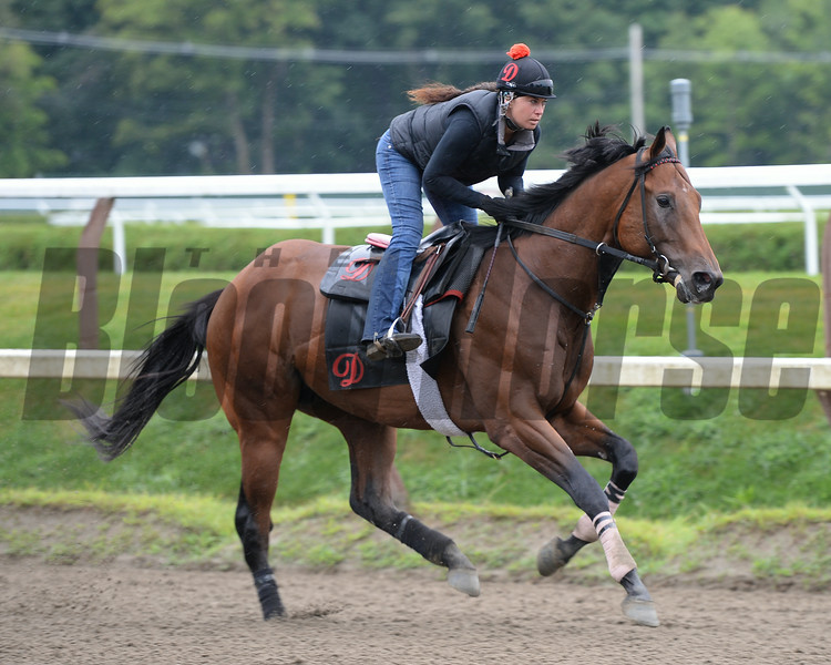 The Big Beast - Saratoga, August 15, 2014.<br /> Coglianese Photos/Susie Raisher