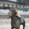 Ever Rider wins the 2014 Temperence Hill Invitational at Belmont Park.<br /> Coglianese Photos/Adam Mooshian