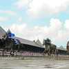 Godolphin's well-bred Antipathy moved to take charge on the turn and scooted clear to victory in the $200,000 Grade III Shuvee Handicap at muddy Saratoga Race Course.<br /> Coglianese Photo