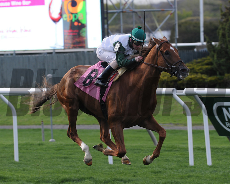 Five Iron wins the Fort Marcy Stakes