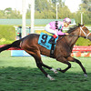 Room Service appreciated some extra ground as she rallied from last to first to deny favored Candy Kitty in the $100,000 Grade III Herecomesthebride Stakes on the Gulfstream Park turf.<br /> Coglianese Photo/Leslie Martin