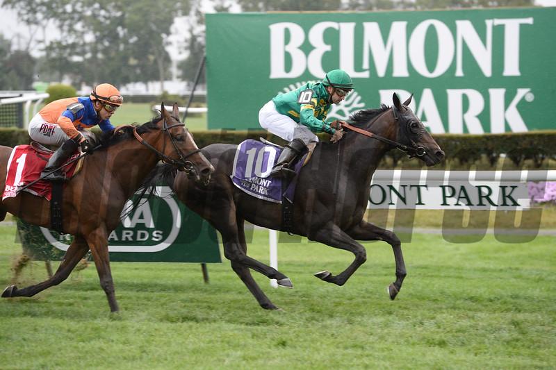 Ball Dancing wins the 2014 Sands Point Stakes at Belmont Park.<br /> Coglianese Photos/Joe Labozzetta