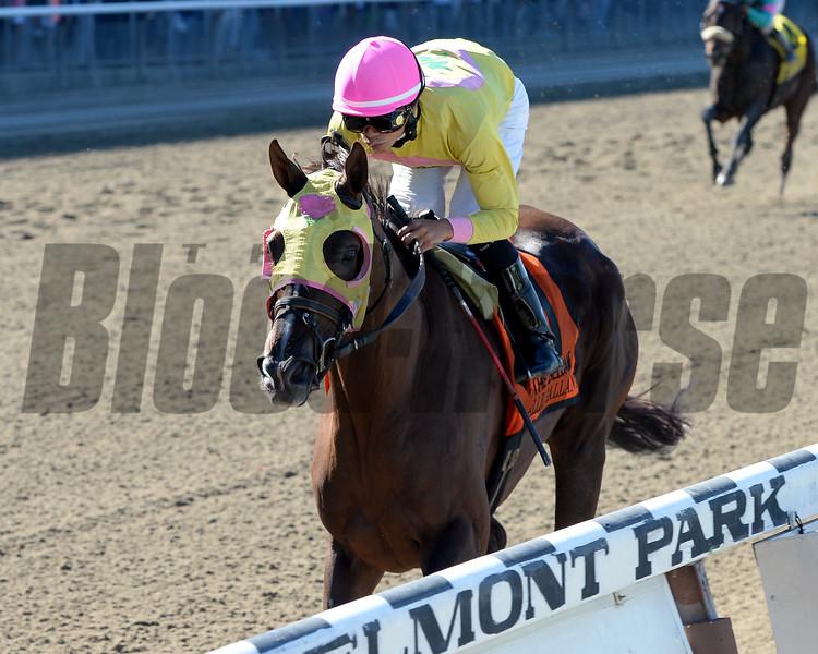Belle Gallantey wins the 2014 Beldame at Belmont Park.<br /> Coglianese Photos/Chelsea Durand