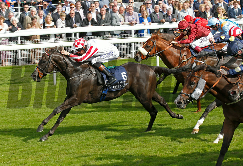 Racing from York 22/8/14 The Coolmore Nunthorpe Stakes.<br /> Sole Power ridden by Richard Hughes wins.<br /> Trevor Jones Photo