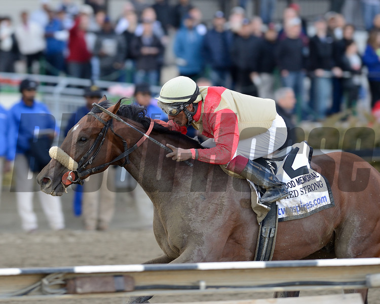 Wicked Strong wins the 2014 Wood Memorial at Aqueduct.<br /> Coglianese Photos/Adam Mooshian