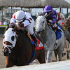 Dad'z Laugh wins the 2014 Big Drama Stakes at Gulfstream Park.<br /> Coglianese Photos/Kenny Martin