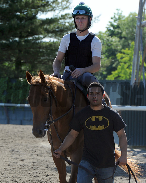 Seek Again at Belmont Park 6/1/2014<br /> Coglianese Photos/Susie Raisher