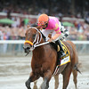 Bern Identity wins the 2014 Tale of the Cat Stakes at Saratoga.<br /> Coglianese Photos/Adam Mooshian