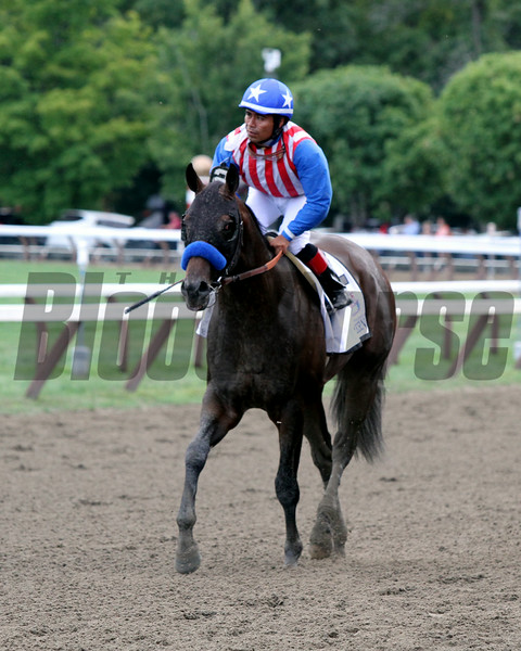 Bayern Travers Favorite Saratoga Chad B. Harmon