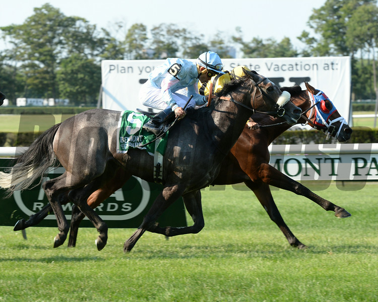 Hangover Kid wins the 2014 Bowling Green at Belmont Park.<br /> Coglianese Photos/Chelsea Durand