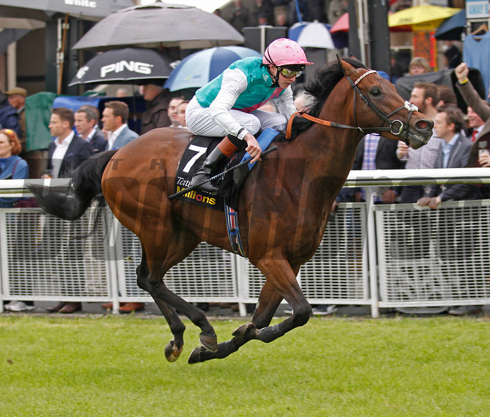 Kingman wins the 2014 Tattersalls Irish Two Thousand Guineas.<br /> Trevor Jones Photo
