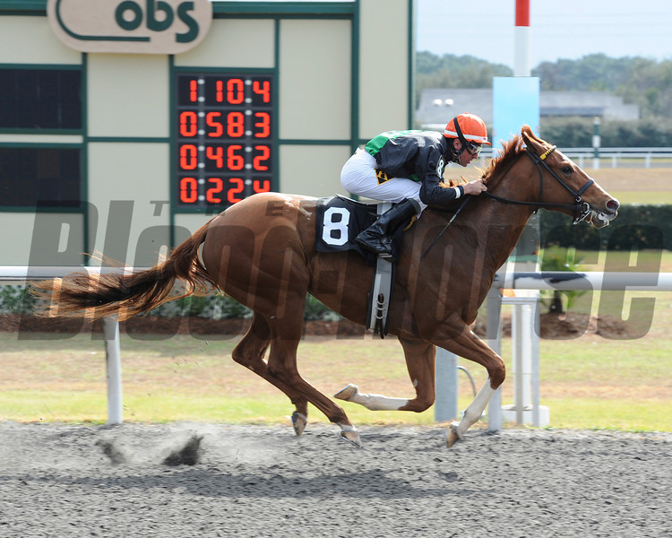Ruslana wins the 2014 OBS Sprint Stakes, Filly Division.<br /> Adam Coglianese/OBS
