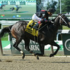 Street Story wins the 2014 Victory Ride Stakes at Belmont Park.<br /> Coglianese Photos