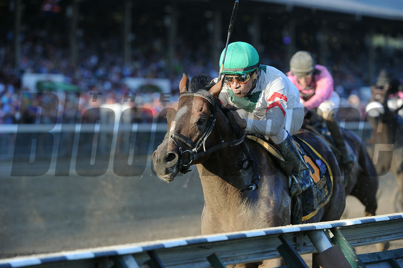 Palace wins the 2014 Forego Stakes at Saratoga.<br /> Coglianese Photos