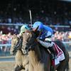 I Spent It wins the Saratoga Special 8/10/2014.<br /> Coglianese Photos/Adam Mooshian