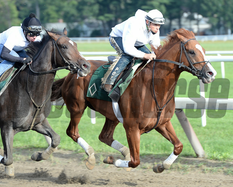 Lea (front) and Charge Now work at Saratoga on August 16, 2014.<br /> Coglianese Photos/Susie Raisher