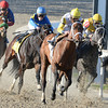 Unbridled Forever, 2, with Robby Albarado aboard turns for home and goes on to win the Silverbulletday Stakes at Fair Grounds in New Orleans, LA Saturday January 18, 2014. It was the 2nd stakes win for jockey Robby Albarado for the day.<br /> Alexander Barkoff Photo