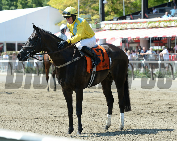 Demonstrative wins the New York Turf Writers Cup Stakes (NSA-I) at Saratoga 8/25/2014.<br /> Coglianese Photos