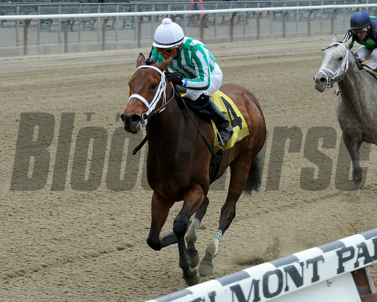 Favorite Tale wins the 2014 Gold Fever Stakes at Belmont Park.<br /> Coglianese Photos/Chelsea Durand