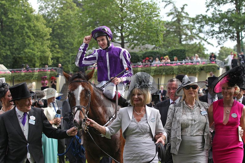 Royal Ascot 19/6/14<br /> The Ascot Gold Cup. Won by Leading Light with The Coolmore owners<br /> Trevor Jones Photo