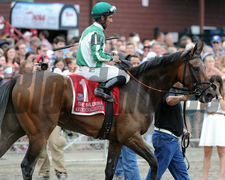 Artemis Agrotera wins the 2014 Ballerina Stakes at Saratoga.<br /> Coglianese Photos