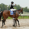 R Free Roll wins the Honorable Miss Handicap at Saratoga July 28. 2014.<br /> Coglianese Photos