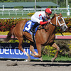 Thank You Marylou wins the Any Limit S. at Gulfstream Park March 9, 2014.<br /> Coglianese Photos/Lauren King