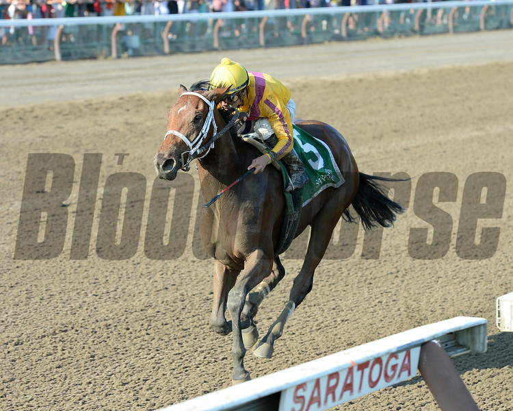 Cavorting wins the Adirondack Stakes at Saratoga 8/10/2014.<br /> Coglianese Photos/Chelsea Durand