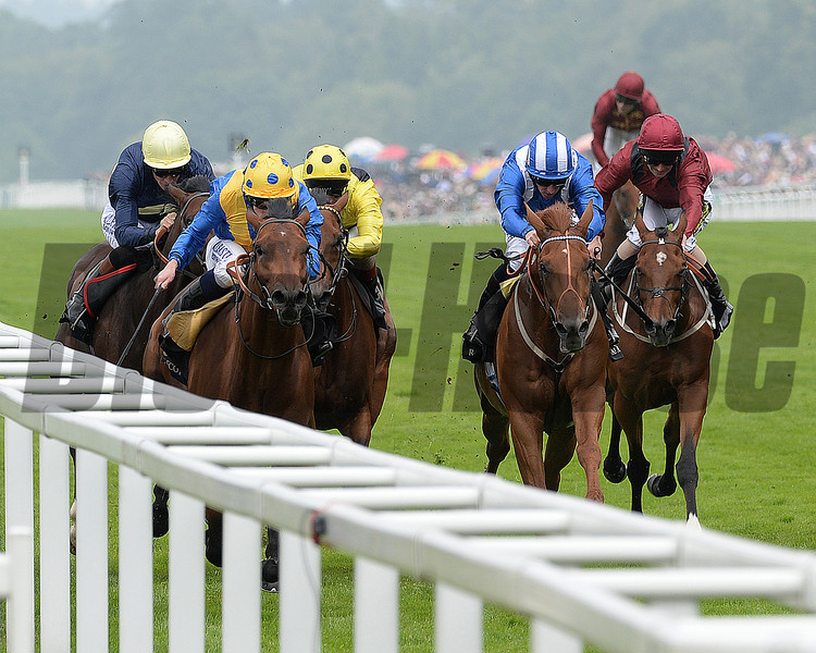 Cannock Chase, Ryan Moore up wins the Tercentenary Stakes, Royal Ascot, Ascot Race Course, England, 6/19/14 photo by Mathea Kelley