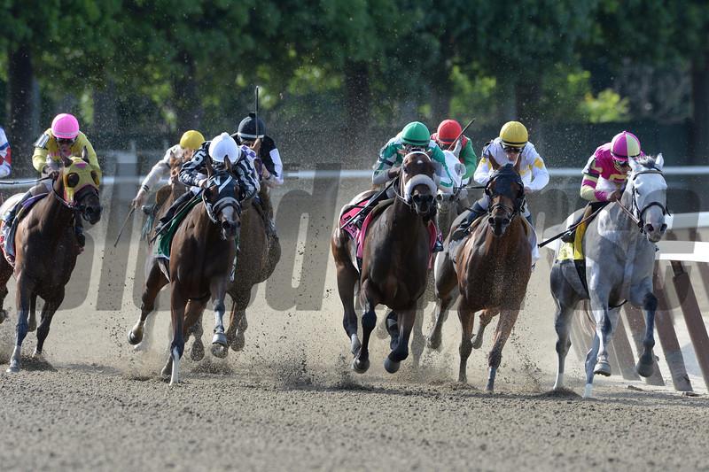 Hot Stones wins the 2014  Bed o' Roses at Belmont Park. <br /> Coglianese Photos/Joe Labozzetta