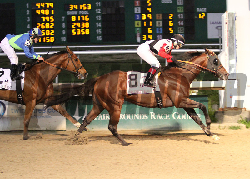 Bradester wins the Mineshaft Stakes at the Fair Grounds in New Orleans, LA Saturday February 22, 2014<br /> Rosie Napravnik was the winning jockey. <br /> Lou Hodges Photo / Hodges Photography