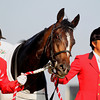 One and Only wins the Japanese Derby.<br /> Masakazu Takahashi Photo