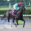 Speechify wins the Kenny Noe Jr. Stakes 11/16/2014.<br /> Coglianese Photos/Lauren King