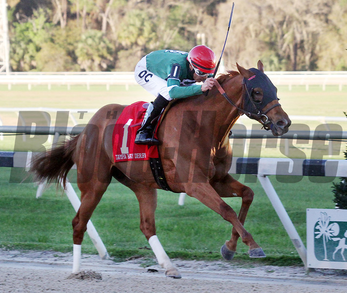 Ring Weekend with Daniel Centeno up wins the Tampa Bay Derby for trainer Graham Motion and Owners West Point Thoroughbreds, Erin Finley, Terry Finely and St Elias Stable.<br /> Photos by Z
