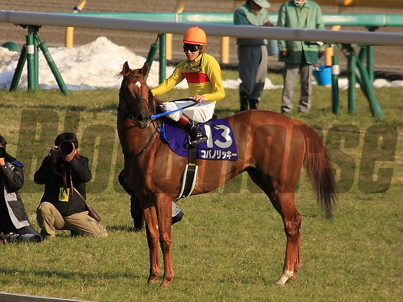 Copano Rickey wins the February Stakes in Japan. 2/23/2014<br /> Naoji Inada Photo