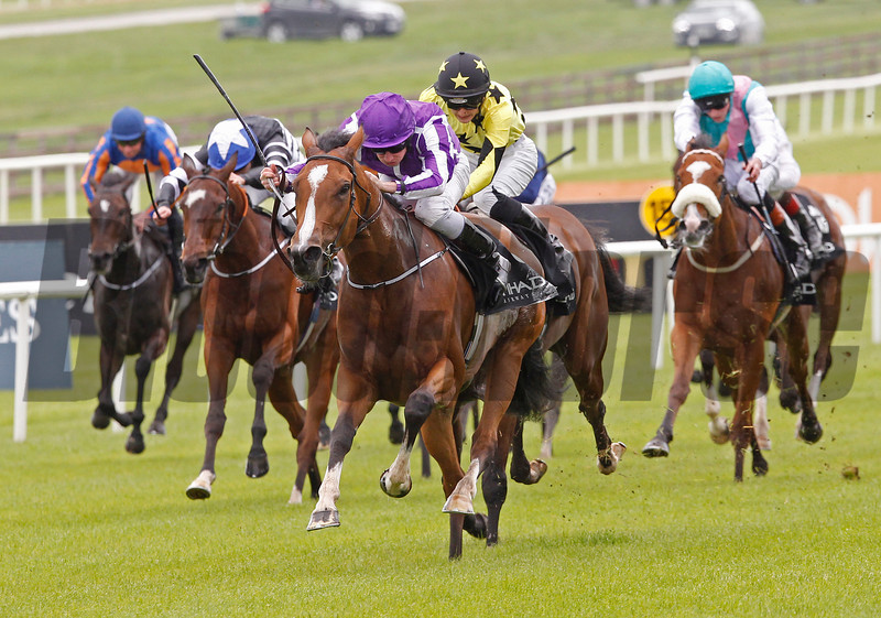 Marvellous wins the Irish One Thousand Guineas at the Curragh May 25, 2014.<br /> Trevor Jones Photo