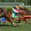 Star Channel wins the 2014 Florida Sunshine Millions Turf.<br /> Coglianese Photos