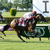 Real Solution wins the 2014 Knob Creek Manhattan Stakes (gr. IT) at Belmont Park.<br /> Coglianese Photos/Lauren King