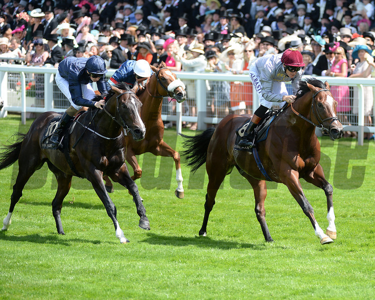 Toronado, Richard Hughes up wins the Queen Anne Stakes, Royal Ascot, Ascot Race Course, England, 6/17/14 photo by Mathea Kelley