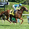 Dayatthespa wins the Yaddo Stakes at Saratoga 8/24/2014.<br /> Coglianese Photos