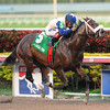 Falling Sky wins the 2014 Gulfstream Park Sprint.<br /> Coglianese Photos