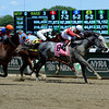 Norumbega with Joel Rosario wins the Brooklyn Invitational (gr. II).<br /> 3-Brooklyn, image 457<br /> Photo by Anne M. Eberhardt