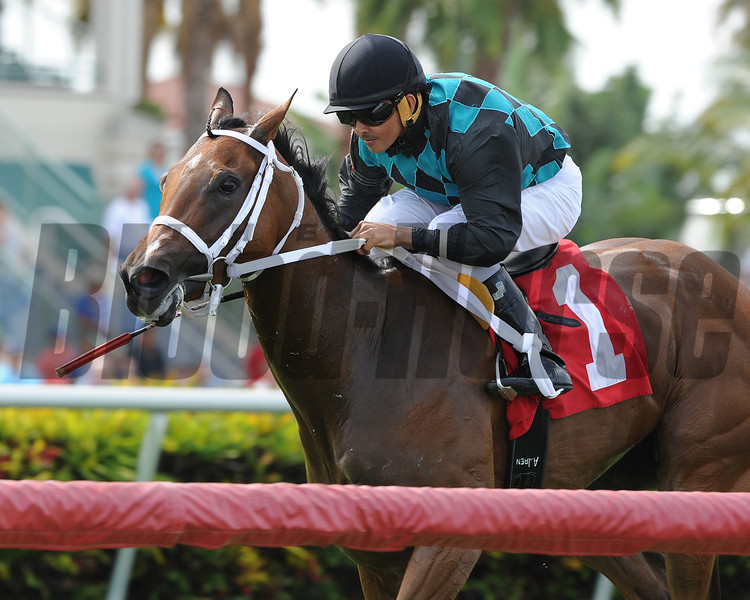 Daring Kathy wins the 2014 Honey Ryder.<br /> Coglianese Photos/Kenny Martin
