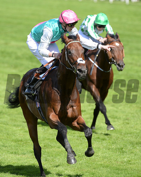 Kingman, James Doyle up, wins the St James Place Stakes, Royal Ascot, Ascot Race Course, England, 6/17/14 photo by Mathea Kelley