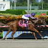 Sing Praises wins the 2014 Birdonthewire Stakes.<br /> Coglianese Photos/Lauren King